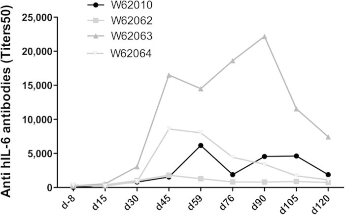 Kinetics of the anti-IL-6 antibody production in the cynomolgus monkeys immunized against the hIS200 peptide immunogen. The control groups did not exhibit any antibodies against IL-6 detected by ELISA and are thus not shown.