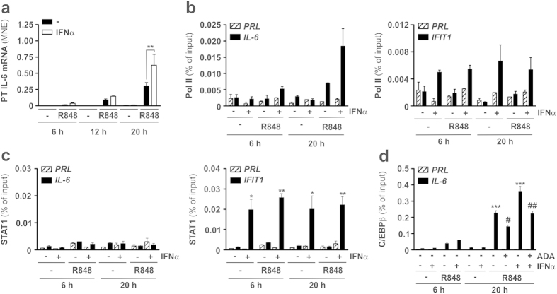 Effect of IFNα on Pol II, STAT1 and C/EBPβ recruitment to the IL-6 promoter in R848-treated neutrophils. (a) Neutrophils (5 × 10 6 /ml), isolated from the peripheral blood of healthy donors, were cultured with or without 5 μM R848, 1000 U/ml IFNα or IFNα plus R848 for 6, 12 and 20 h to evaluate IL-6 primary transcript (PT) expression by RT-qPCR (n = 3–8). Asterisks indicate a significant increase: **p