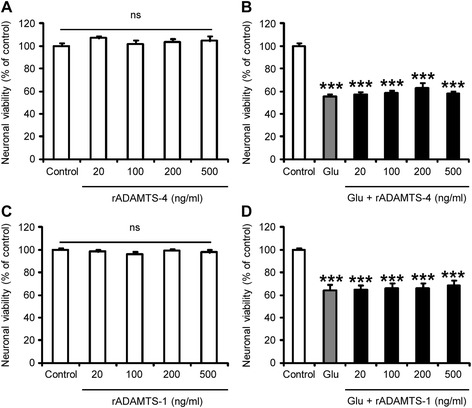 rADAMTS-4 is not toxic to cortical neurons in vitro . Neuronal viability assessed by MTT assay in primary cortical neuron cultures treated or not with a human recombinant ADAMTS-4 ( a - b ) or ADAMTS-1 ( c - d ) at different doses (20, 100, 200, 500 ng/ml) 30 min before exposure ( b , d ) or not ( a , c ) to glutamate 400 μM (Glu) during 24 h. Values plotted are mean ± SEM. Mann–Whitney U -tests: P > 0.05 control Vs ADAMTS, *** P
