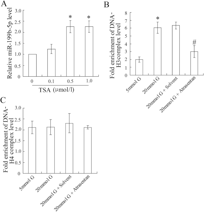 Atrasentan decreased histone deacetylation of the miR-199b-5p promoter in HK-2 cells exposed to high glucose. The HK-2 cells were exposed to various concentrations of TSA (0.1, 0.5 and 1.0 μmol/L) for 72 h and the expression of miR-199b-5p was then quantified by real-time PCR ( A ). The HK-2 cells were incubated with various concentrations of glucose (5 mmol/L or 20 mmol/L) and treated with atrasentan. DNA-H3 and DNA-H4 complex levels were detected by a ChIP assay ( C , D ). * P