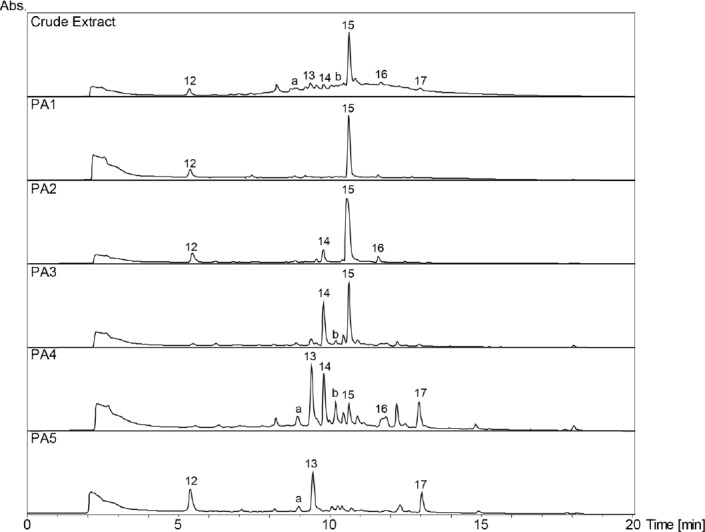 HPLC-DAD chromatograms of the crude extract and its polyamide fractions (PA1–PA5) of Myrcia splendens. SunFire C18 column (150 x 3 mm i.d., 3.5 μm); 5–100% MeCN/0.1% aqueous formic acid in 30min, 0.4 mL/min; detection: 210–700nm, maxplot.