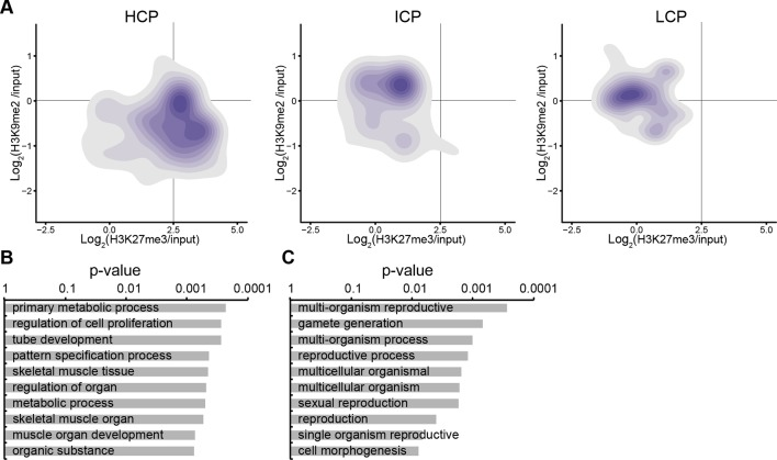 Accumulation of H3K9me2 or H3K27me3 at promoters of genes becoming repressed depends on CpG content. ( A ) Density contour plots showing H3K9me2 and H3K27me3 enrichment in E6.25 epiblast at promoters of HCP, ICP, and LCP. Shown are only promoters associated with genes becoming repressed in E6.25 epiblast when compared with E3.5 ICM (Log2(RPKM)