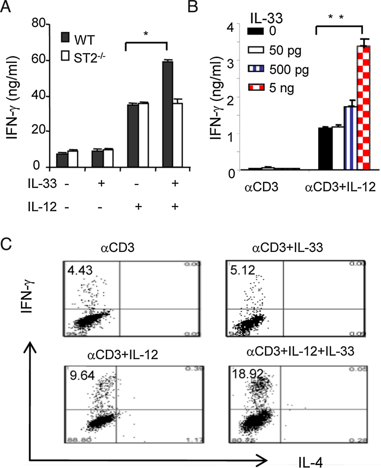 IL-33 enhances Th1 cell polarization  via  ST2 and IL-12. CD4 +  T cells from WT, ST2 −/−  mice (A) or human cord blood (B) were stimulated with anti-CD3 Abs with or without IL-33 (10 ng/ml) or IL-12(10 ng/ml) for 72 h. Supernatants IFN-γ and IL-4 concentrations were measured by ELISA. (C) Human CD4 +  T cells were stimulated as above and intracellular cytokines were determined using FACScan. Data are presented as mean ± SD,  n  = 5 mice/group, and are representative of three independent experiments.  ∗ p