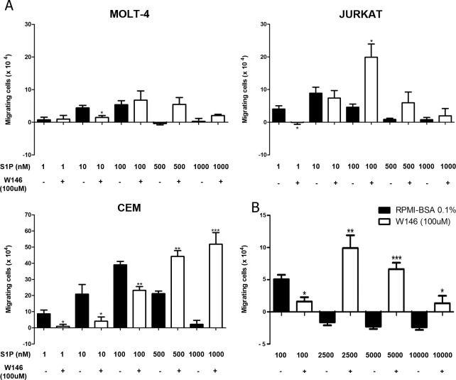 S1P1 is involved in S1P-driven chemotactic responses of T-ALL blasts. T-ALL blasts were serum-starved for 2 h and pre-treated or not with W146 (100 μM). (A) Cells were applied to Transwell™ chambers with S1P 1, 10, 100, 500 or 1000 nM and incubated for 4 hours (n = 3). (B) Migratory response of CEM cells toward S1P 100, 2500, 5000 and 10000 nM (n = 3). Values correspond to a specific migration after subtracting the numbers of migrating cells obtained in wells with culture medium only. Black bars correspond to T-ALL blasts pre-treated with RPMI-BSA 0.1% and white bars correspond to T-ALL blasts pre-treated with W146. Results are expressed as mean ± SEM and were analyzed by unpaired Student's t test. Differences were considered statistically significant when * p˂0.05, ** p ˂0.01 or *** p ˂0.001.