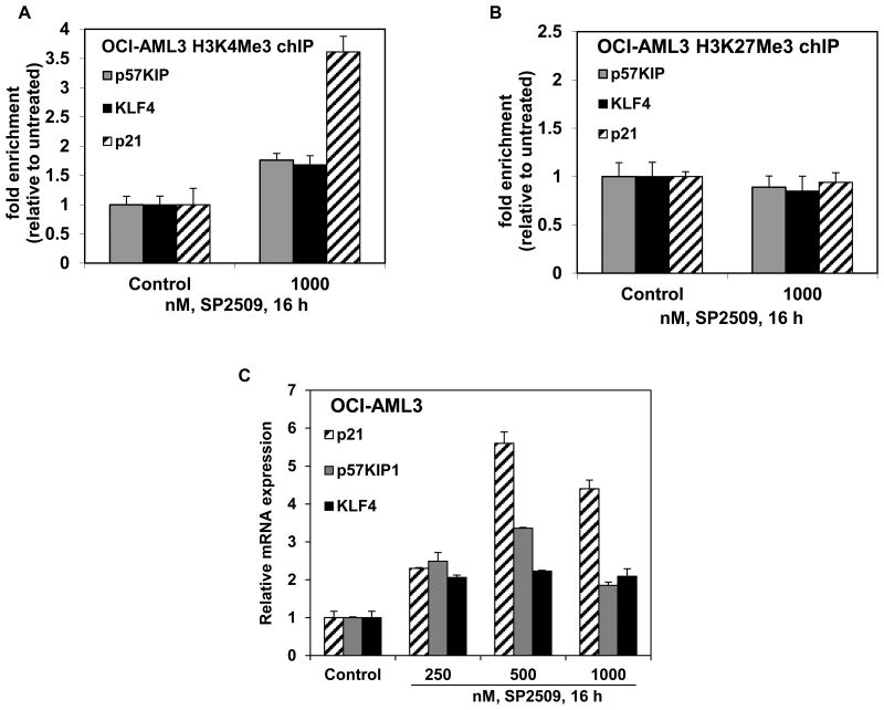 Treatment with SP2509 increases H3K4Me3 on the promoters of p57 Kip, KLF4, and p21 and induces mRNA expression of p57Kip, KLF4 and p21 in AML cells A-B . OCI-AML3 cells were treated with the indicated concentrations of SP2509 for 16 hours. At the end of treatment, chromatin was cross-linked, sonicated, and chromatin immunoprecipitation (chIP) was performed for H3K4Me3 and H3K27Me3. The chIP'ed DNA was used as template for qPCR. The fold enrichment was calculated using the Ct value of the chIP'ed DNA versus the Ct for the input DNA. C . OCI-AML3 cells were treated with the indicated concentrations of SP2509 for 16 hours. Then, total RNA was isolated and reverse transcribed. The resulting cDNA was utilized for quantitative PCR of p57Kip, KLF4 and p21 using TaqMan probes. The relative mRNA expression was normalized against GAPDH.
