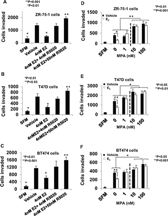 Regulation of breast cancer cell invasiveness by pre-menopausal concentrations of estrogen and progestin and dose-dependent effects of <t>medroxyprogesterone</t> acetate In panels A–C. hormone depleted ZR-75-1 cells (Panel A) , T47D cells (Panel B) , and BT474 cells (Panel C) at 30% confluence were treated with vehicle or E 2 (4 nM), alone or in combination with R5020 (5 nM or 50 nM) for 48 h. Cells were trypsinized and subjected to the matrigel transwell invasion assay with vehicle or the appropriate concentration of E 2 and/or R5020 present in the top and bottom chambers, as described under Materials and Methods. In the negative control, serum free media (SFM) was used instead of the FBS chemoattractant. In panels D–F. hormone-depleted ZR-75-1 cells (Panel D) , T47D cells (Panel E) , and BT474 cells (Panel F) cells at 30% confluence were treated with vehicle or the indicated concetrations of <t>MPA</t> either with or without 1nM E 2 for 48 h. Cells were trypsinized and subjected to the matrigel invasion assay with vehicle or the appropriate concentration of E 2 and/or MPA present in the top and bottom chambers, as described under Materials and Methods. In panels A–F, values for invasiveness are represented as average number of cells invaded from triplicate treatment sets and the error bars represent standard deviation. One-way ANOVA was performed on triplicate treatment sets and P values are indicated.