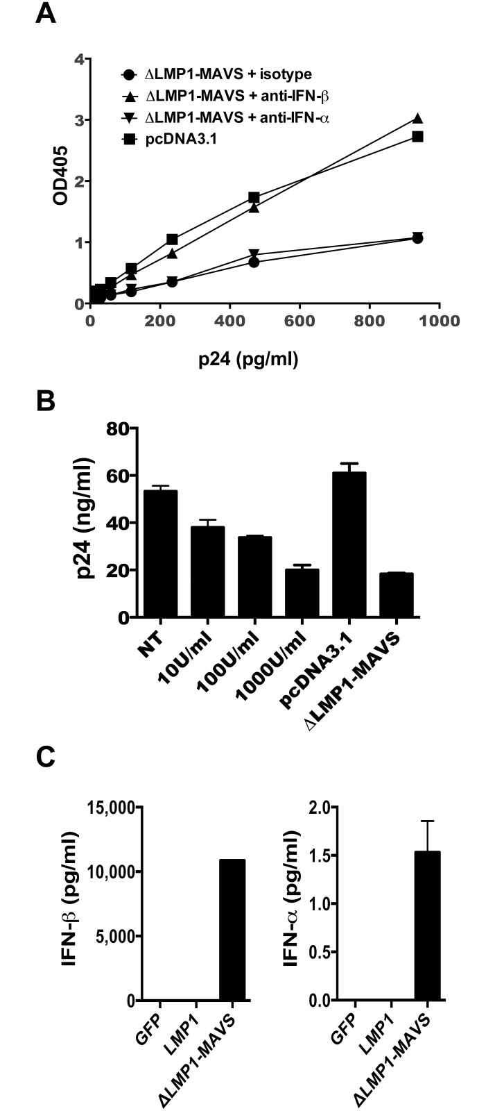 Beta-interferon mediates inhibition of HIV-1 BaL replication. (A) The relative level of HIV-1 BaL strain viral replication in TZM-bl cells was measured following incubation with supernatant from 293T cells transfected with either pcDNA3.1 or pΔLMP1-MAVS plasmid, combined with 60 μg of isotype control antibody, anti-IFN-β antibody, or anti-IFN-α antibody. (B) Human CD4+ T cells were infected with HIV-1 BaL in the presence of increasing concentrations of interferon-α and compared to infection in the presence of 293T supernatant following transfection with either pcDNA3.1 or pΔLMP1-MAVS plasmid. (C) Supernatant from 293T cells transfected with pcDNA3.1 GFP, LMP1, or ΔLMP1-MAVS plasmid was assayed for IFN-α and IFN-β secretion by ELISA. NT: no treatment.