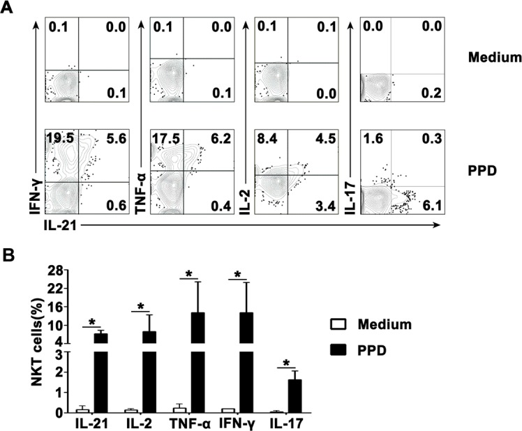 Antigen-induced expression of IL-21 with IFN-γ, TNF-α, IL-2 and IL-17 by CD3 + TCRvβ11 + NKT cells PFMCs were incubated for 6 hrs with or without PPD plus anti-CD28 NKT cells were gated and analyzed for the expression of cytokines. A. Statistical results of the expression of IL-21, IFN-γ, TNF-α, IL-2 and IL-17 after stimulation with PPD plus anti-CD28 are shown. *, P