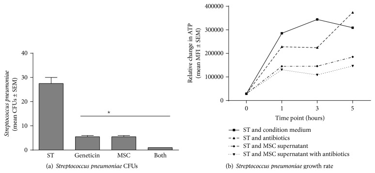 hMSCs and their products on Streptococcus pneumoniae growth. Bone marrow derived hMSCs supernatants were cultured with different dosages of Streptococcus pneumoniae with and without the addition of geneticin (100 μ g/mL). Aliquots of the bacteria were streaked onto MacConkey plates for CFUs (a) or evaluated for ATP production (b). hMSC supernatants ( n = 8 different donors) significantly decreased both Streptococcus pneumoniae CFUs ((a), P ≤ 0.05) and growth rates ((b), P ≤ 0.05). Geneticin was used as a positive control, decreasing both CFUs ( P ≤ 0.05) and growth rates ( P ≤ 0.05). hMSC supernatants decreased CFUs and enhanced antibiotic sensitivity when measuring CFUs. However, hMSCs supernatants had minimal antibiotic enhancing effect on Streptococcus pneumonia growth rate (b). ST = Streptococcus pneumoniae growth without treatment. Geneticin = treatment with the antibiotic geneticin, +hMSCs = treatment with hMSC derived supernatant, and Both = treatment with both MSC supernatants and geneticin.