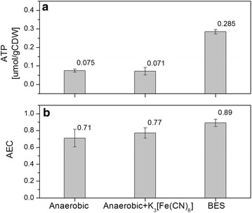 a Specific intracellular ATP concentration in P. putida F1 under anaerobic conditions in the absence or presence of K 3 Fe(CN) 6 and electrodes. b Adenylate energy charge under the same conditions (AEC = (ATP + 0.5×ADP)/(ATP + ADP + AMP))