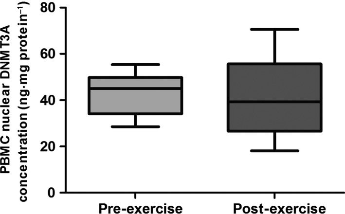 Mean (±95% CI ; ±min./max.) peripheral blood mononuclear cell ( PBMC ) nuclear concentration of DNA methyltransferase 3A ( DNMT 3A) following stimulation with pre‐ and post‐exercise plasma. A paired sample t ‐test was used to test significance.
