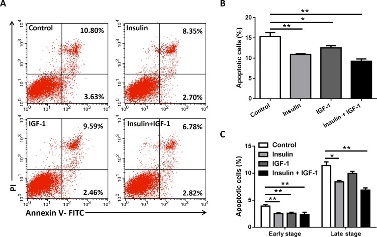 Insulin/IGF-1 inhibits colon cancer cells apoptosis in vitro . MC38 cells were cultured with insulin and IGF-1 alone or both together for 72 hours. Control groups were treated with PBS. (A) Cells were harvested for apoptosis analysis by Annexin V and PI staining on flow cytometry. The early stage (Annexin V+/PI-) and late stage (Annexin V+/PI+) apoptotic events were gated. The data shown are representative of three separate experiments. Quantification of total percentage (B) and early/late stage percentage (B) of apoptotic cells after the treatments. *P