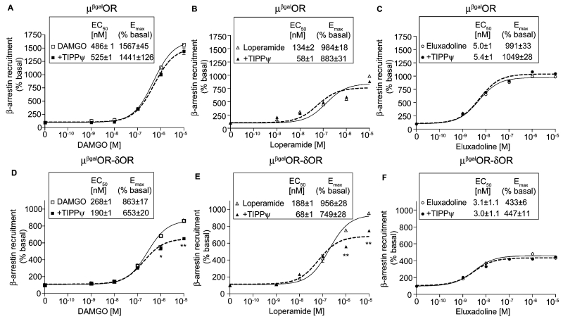 Effect of DAMGO, loperamide and eluxadoline on β-arrestin recruitment. Cells (5000/well) expressing either μ βgal OR (A–C) or μ βgal OR-δOR (D–F) were treated with either DAMGO (A and D), loperamide (B and E), eluxadoline (C and F) (0–10 μM final concentration) in the absence or presence of the δOR antagonist, TIPPψ (10 nM final concentration) for 60 min at 37 °C and β-arrestin recruitment was measured as described in Section 2. Results are the mean ± S.E.M. n = 4–12. * p