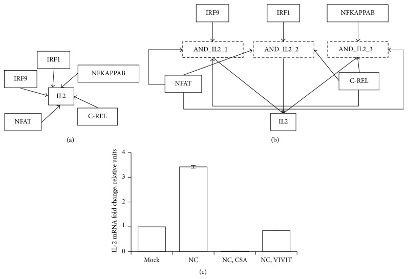 Regulation of IL2 by NFAT inferred by dynamic Boolean model: (a) network of interactions between IL2 and the TFs regulating its expression assembled from literature, (b) enhanced regulatory network inferred using dynamic Boolean model, and (c) the expression of IL2 mRNA evaluated by RT-PCR in <t>DCs</t> treated for one hour with medium containing the NFAT inhibitors CsA (CsA), <t>VIVIT</t> peptide (VIVIT), or vehicle (−), and then left mock-infected (mock) or infected with IV during 2 hours. The expression levels of IL2 in infected cells were normalized to the levels of nontreated, mock-infected cells.