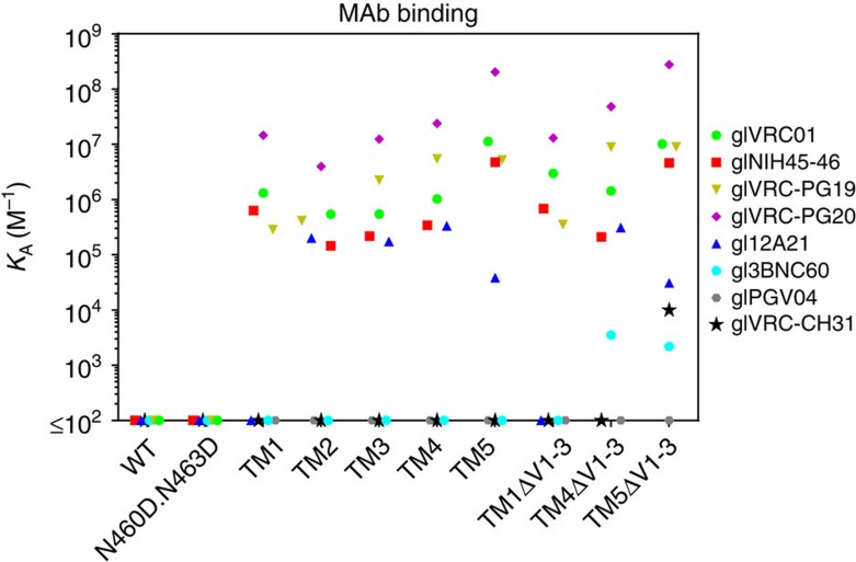 Binding affinities of the indicated germline VRC01-class antibodies to selected 426c variants. Soluble trimeric 426c gp140 variants were biotinylated and immobilized on a streptavidin biosensor. The association constant of the various germline VRC01-class antibodies was determined by BLI, as described in the Methods section. Undetectable antibody-Env binding is shown on the x axis. Full kinetic parameters are shown in Supplementary Table 1 . See Table 1 for a description of the various mutations on the 426c Env.