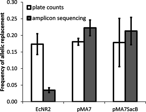 Transient expression of Dam enables efficient recombineering. ARFs for xylA Y13* in strains EcNR2, K-12 MG1655/pMA7 and K-12 MG1655/pMA7SacB following one cycle of MAGE with a 90 bp phosphorothioated oligonucleotide. ARFs were determined both by counting red (wild-type allele) and white (mutant allele) colonies appearing following plating on MacConkey agar containing 1% xylose, and by amplicon sequencing within the xylA locus. Error bars indicated standard deviations about the mean of three replicates (two for K-12 MG1655/pMA7SacB).