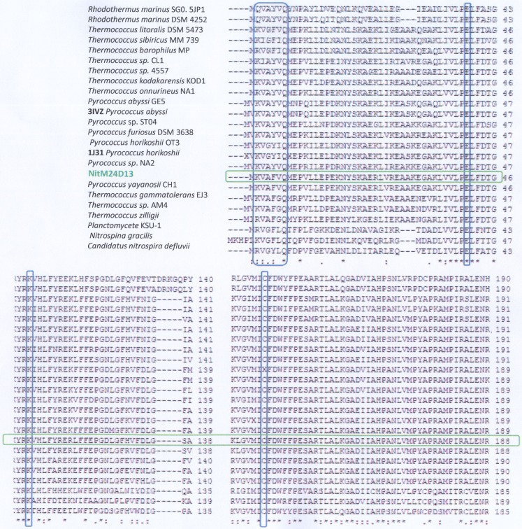 Analysis of the amino acid sequence alignment of the nitrilase gene of M24D13 microorganism against GenBank, PDB, SwissProt, PIR, and PRF data bases using Clustal W software . The red marked columns indicate the amino acids that belong to the catalytic triad of the known nitrilase enzymes (E-K-C). The blue marked column corresponds to the consensus sequence present at the N-terminal for nitrilases. The green marked lane corresponds to the sequence of NitM24D13.
