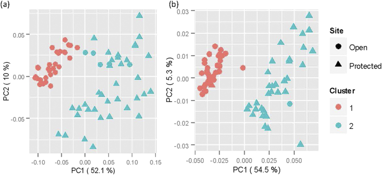 Principal component analysis of microbial communities on strawberry leaves. First two Principle Components derived from correlation in individual OTU abundance among individual samples for bacteria ( a ) and fungi ( b ) – the OTU abundance was calculated as log 2 (x i + 1)/∑(log 2 (x i + 1)) for a given sample where x is the original counts value for the i th OTU. The two clusters were derived from the weighted UniFrac distance using the Ward method. Strawberry plants of cv. Vibrant grown in the open or under protection were sprayed or not sprayed with Serenade (a commercial formulated product of Bacillus subtilis ); leaves were sampled 4 hours (4H) and 8 days (8D) after spraying. In addition, leaves emerged after spraying were also sampled on day 8. Microbial populations on the phyllosphere were profiled with the Illumina MiSeq.