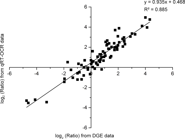 Linear regression analysis of the fold change of the gene expression ratios between DEG sequencing and qRT-PCR. 26 unigenes were selected for quantitative real-time PCR analysis to confirm the accuracy and reproducibility of the Illumina expression profiles using the same RNA samples that were used for DGE sequencing. The relative expression levels of the genes were calculated using the 2 −ΔΔCt method in qRT-PCR analysis. The DGE sequencing data were represented by the FPKM value of samples. Scatterplots were generated by the log 2 expression ratios from DGE sequencing data (x-axis) and qRT-PCR data (y-axis).