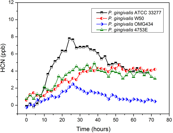 Dynamic profiles of HCN production by different P. gingivalis strains. The HCN concentrations from three reference strains (ATCC 33277, W50 and OMG 434) and one clinical isolate (4753E) of P. gingivalis were measured. The HCN concentrations from each strain were measured every 20 minutes. For clarity, data points are shown only every two hours.