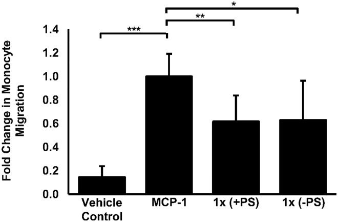 A physiologically relevant dose of the formulation can inhibit <t>MCP-1</t> induced migration of human monocytes. Cellular migration was assessed using THP-1 monocytes that were treated with vehicle (vehicle control) or treated with MCP-1 (20 ng/ml) alone or with MCP-1 (20 ng/ml) in the presence the complete formulation (+PS) or with MCP-1 (20ng/ml) in the presence the formulation lacking PS (-PS) for 3 hours. Monocyte migration is expressed as a fold-change compared to the proportion of cells that moved from the apical compartment into the basolateral compartment in response to MCP-1 alone that has been arbitrarily set as 1. The data are presented as the mean ± SEM from four independent experiments. Statistical analysis was performed using a one-way ANOVA with Dunnett T3 post-hoc analysis where ** p