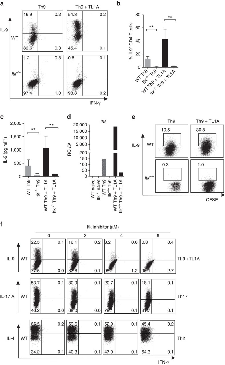 Itk is required for Th9 differentiation. ( a – d ) Sorted naive CD4 + T cells from WT and Itk −/− mice were differentiated under Th9 conditions (1 μg ml −1 anti-CD3, 3 μg ml −1 anti-CD28, 20 ng ml −1 IL-4, 5 ng ml −1 TGFβ1 with or without 10 ng ml −1 TL1A, in presence of T-depleted splenocytes as APCs) for 3 days, ( a ) cells were restimulated with PMA and Ionomycin and IL-9 and IFN-γ production were analysed by intracellular staining. Representative flow plots from one out of 10 experiments. ( b ) Mean±s.e.m. of 10 independent experiments ** P