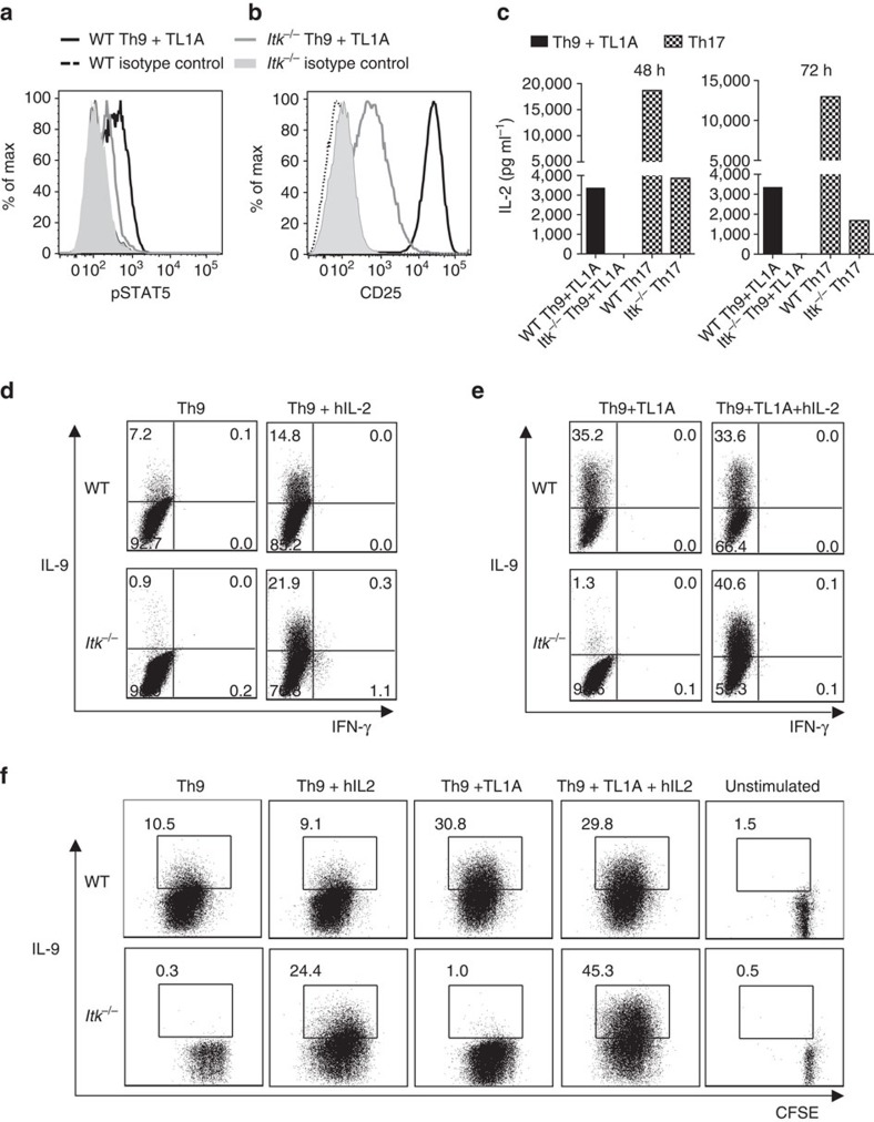 IL-2 rescues Th9 differentiation in Itk −/− CD4 + T cells. ( a - c ) Sorted naïve CD4 + T cells from WT and Itk −/− mice were differentiated under Th9 conditions plus TL1A for 3 days and pSTAT5 ( a ) and CD25 ( b ) were determined by flow cytometry: WT (black), Itk −/− (grey) lines. ( c ) Sorted naive CD4 + T cells were differentiated as in a or under Th17 conditions and IL-2 in supernatants were determined at 48 and 72 h by Luminex. Th9 conditions: black bars. Th17 conditions: hatched bars. ( d , e ) Sorted naïve CD4 + T cells were differentiated for 3 days under Th9 ( d ) or Th9 plus TL1A ( e ) conditions in absence or presence of blocking anti-IL-2 plus hIL-2, restimulated with PMA and Ionomycin and IL-9 analysed by flow cytometry. ( f ) Sorted naive CD4 + T cells from WT and Itk −/− mice were stained with CSFE, differentiated, and restimulated with PMA and Ionomycin to evaluate IL-9 expression. Data in a - f are representative of one out of at least three independent experiments.
