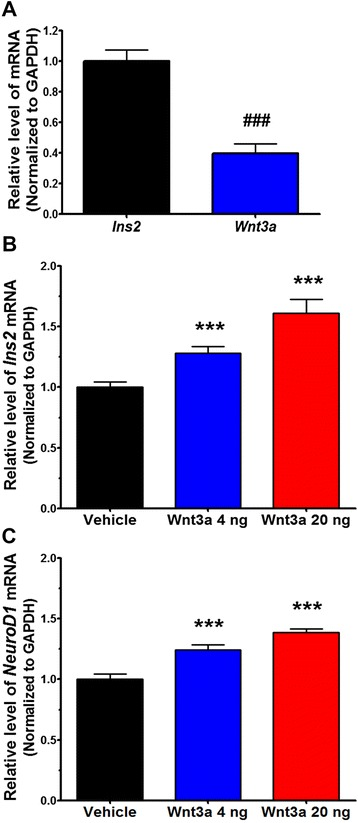 Wnt3a upregulates NeuroD1 and Ins2 in the mouse hypothalamus. The basal mRNA levels of Ins2 and Wnt3a were measured by qRT-PCR in hypothalamic tissues from C57BL/6 male mice ( n = 6−9) ( a ). C57BL/6 male mice received icv injections of vehicle or Wnt3a (4 or 20 ng), and hypothalamic tissues were dissected after 24 h. The mRNA levels of Ins2 ( b ) and NeuroD1 ( c ) were measured by qRT-PCR ( n = 6−9). Data are means + SEM. ### p