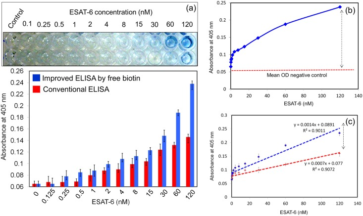 Limit of detection of ESAT-6. (a) ESAT-6 was titrated from 0 to 120 nM. LOD was compared between experiments with and without free biotin added to streptavidin-HRP. (b) Calculation of mean OD. (c) Statistical calculation on improved and conventional ELISA. R 2 values were calculated and they indicate the significance.