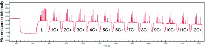 Baseline record of the whole Agilent DNA 1000 chip analysis on 2100 Bioanalyzer. Ladder well is measured first followed by 12 wells filled with the same positive control. The fluorescence intensity is decreasing during the measurement. L - ladder, 1C +…12C + - 12 measurements of one positive control.
