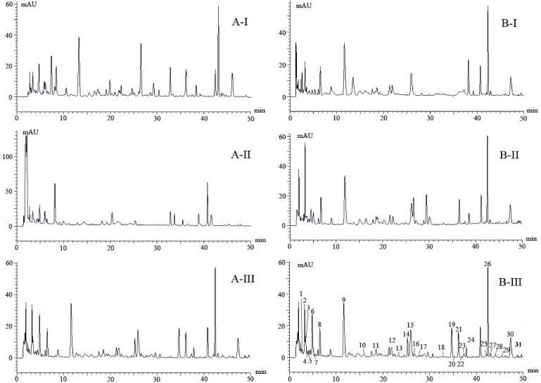 Optimized HPLC chromatograms at 220 nm selected from three column system (AI—AIII) and three mobile protocols (BI-BIII). Thirty-one compounds (peaks 1–31) were separated by BIII and identified using UPLC- LTQ Orbitrap mass spectrometry.
