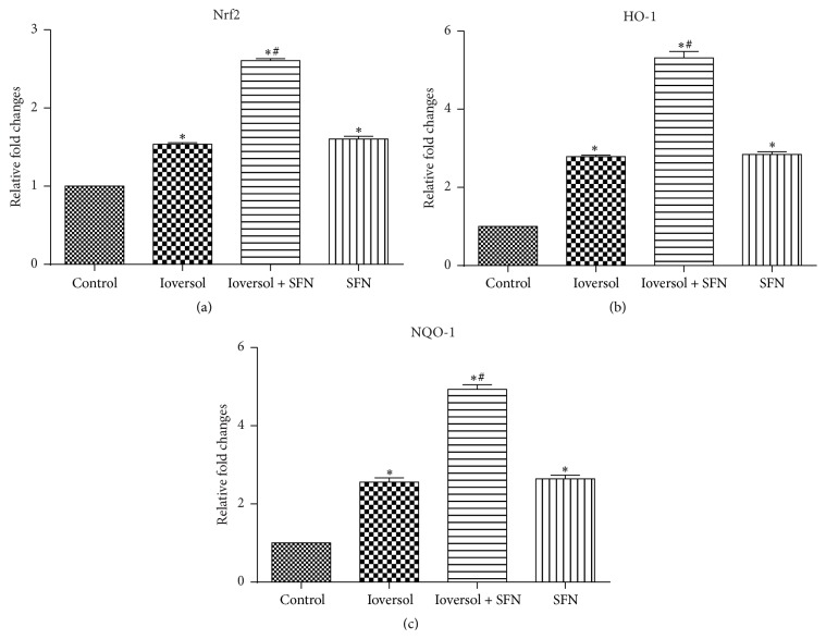 SFN increased the expression levels of Nrf2, HO-1, and NQO-1 in CIN rats. (a) The relative expression of Nrf2; (b) the relative expression of HO-1; and (c) the relative expression of NQO-1. ∗ P