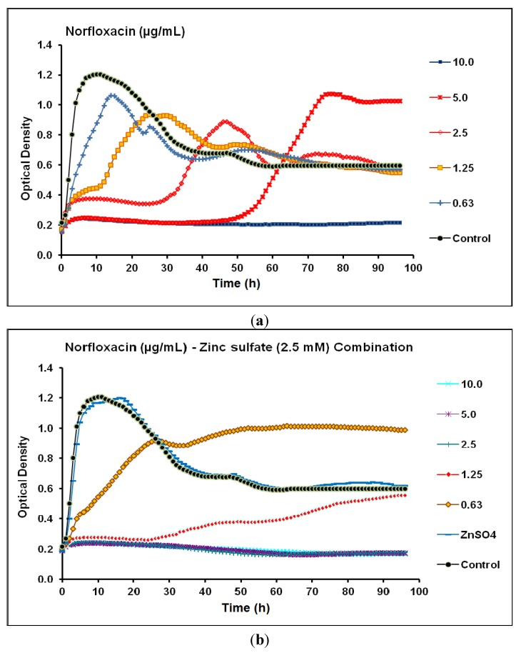 Real-time data showing the effect of ( a ) Norfloxacin alone (0.63–10.0 µg/mL) and ( b ) Norfloxacin (0.63–10.0 µg/mL) in combination with zinc sulfate (2.5 mM) on P . aeruginosa CCIN34519 biofilm as monitored by the Bioscreen C over 96 h. Control represents cation adjusted Mueller Hinton II broth (CAMH) while, ZnSO 4 indicates CAMH broth supplemented with 2.5 mM zinc sulfate.