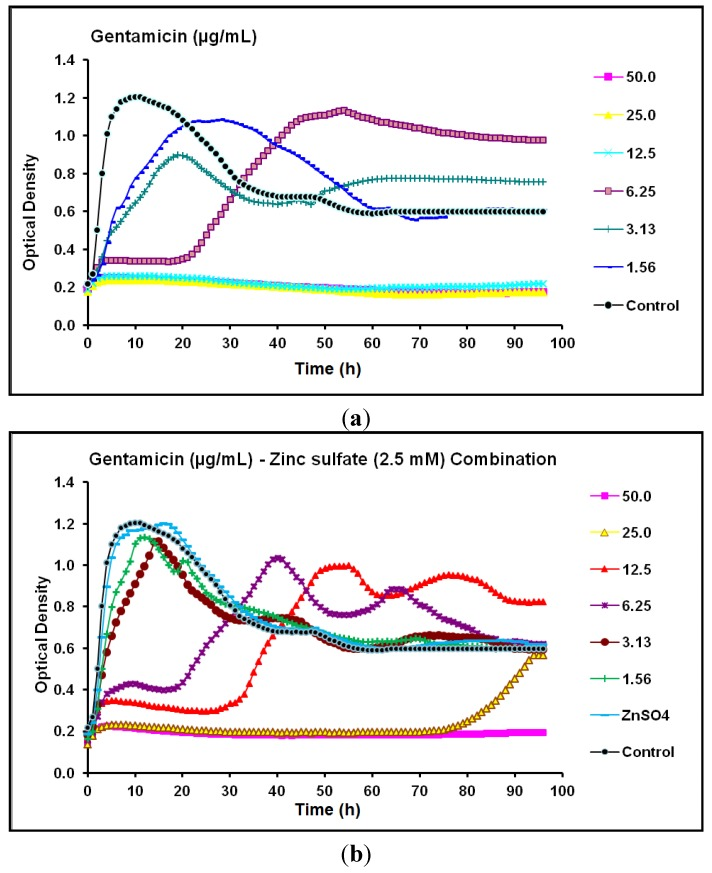 Real-time data showing the effect of ( a ) Gentamicin alone (1.56–50.0 µg/mL) and ( b ) Gentamicin (1.56–50.0 µg/mL) in combination with zinc sulfate (2.5 mM) on P . aeruginosa CCIN34519 biofilm as monitored by the Bioscreen C over 96 h. Control represents cation adjusted Mueller Hinton II broth (CAMH) while, ZnSO 4 indicates CAMH broth supplemented with 2.5 mM zinc sulfate.
