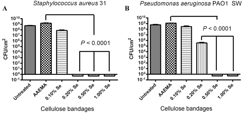 One month stability study of the selenium bandage bacterial biofilm formation. The CFU determination is for a 1 cm 2 bandage in 1 mL of solution. ( A ) S. aureus 31; ( B ) P. aeruginosa PAO1 SW .