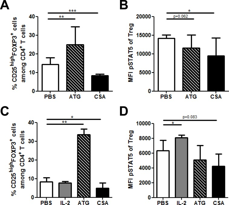 Impact of Anti-thymocyte globulin (ATG) and cyclosporin A (CSA) on T reg phospho STAT5 levels in vivo and in vitro A.-B. Human PBMCs, freshly isolated from 3 healthy donors were cultured in triplicate in the presence of either PBS, CSA (500 ng/ml) or ATG (100 μg/ml) for 24 hours. The impact of these compounds on CD4 + CD25 high FOXP3 + cell frequency A. as well as on phospho STAT5 levels in T regs B. was assessed by flow cytometry using the PFE technique for permeabilization. Data show median values of 9 replicates (3 biological replicates in triplicates / condition) with interquartile range (* p