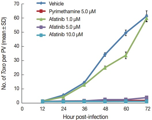 Afatinib inhibits the intracellular growth of the T. gondii RH strain in a dose-dependent manner. The number of parasites was counted per PVM after Giemsa staining after treatment with Afatinib 1, 5, and 10.0 μM concentrations. DMSO was used as the negative vehicle control, whereas pyrimethamine 5.0 μM was used as the positive control.