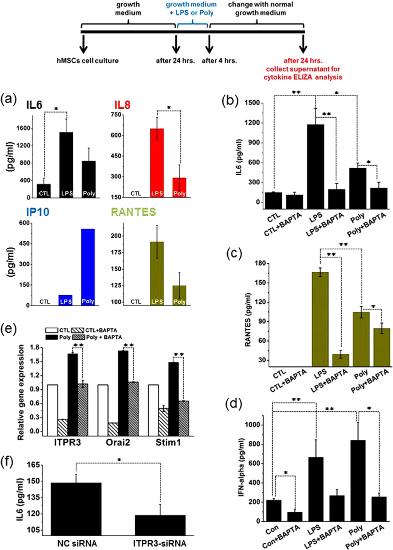 Stimulation with LPS or Poly(I:C) Promotes Cytokine Release in a Ca 2+ Dependent Manner in hMSCs. ( a ) ELISA assay revealing more pronounced releases of IL6, IL8, IP10 and RANTES from cells exposed to LPS or poly(I:C) in comparison with control cells. Experiments were performed three times. ( b – d ) ELISA assay demonstrating the ablation of IL6, RANTES and IFN-alpha release by chelation of intracellular Ca 2+ with BAPTA/AM (5 μM) and siRNA from LPS- or poly(I:C)-treated cells. Experiments were performed three times. ( e ) Real-time RT-PCR quantification showing ITPR3, Orai2 and Stim1 mRNA expression profiles in control and poly(I:C) with and without BAPTA/AM. Experiments were performed three times. ( f ) ELISA assay demonstrating the ablation of IL6 release by ITPR3 knockdown (ITPR3-siRNA). Experiments were performed six times. The significance level was set at *p