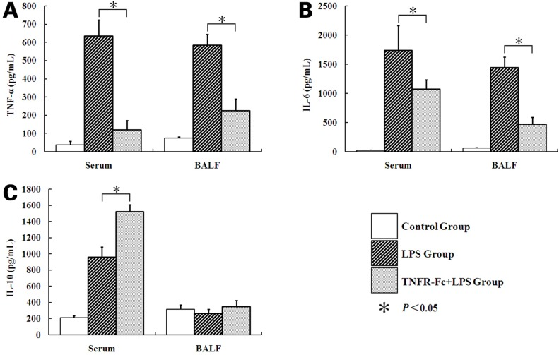 Concentration of TNF-α, IL-6, and IL-10 in serum and BALF after LPS/saline injection. Increase in TNF-α and IL-6 from baseline in serum/BALF obtained from mice in response to LPS or TNFR-Fc + LPS. TNFR-Fc decreased serum/BALF TNF-α and IL-6 levels in ALI mice. Serum IL-10 concentration increased after LPS injection. TNFR-Fc increased serum IL-10 in ALI mice. (A) TNF-α, (B) IL-6, (C) IL-10. Error bars represent SEM (N = 3 in each group). * P