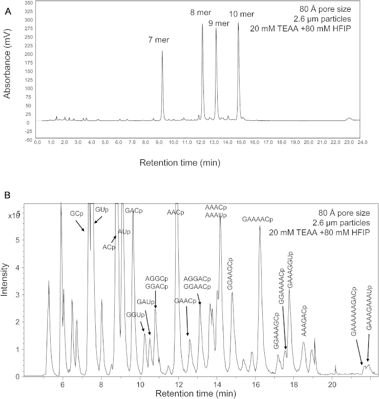 RNase mass mapping using 80 Å pore size superficially porous particles. (A) IP RP HPLC analysis of 7–10 mer oligonucleotides on superficially porous particles, 80 Å pore size using gradient 3. (B) LS ESI MS analysis of RNase a mass mapping of 500 nt ssRNA in vitro transcript. 500 ng of ssRNA was analysed using gradient 4. The identified oligoribonucleotides are highlighted.