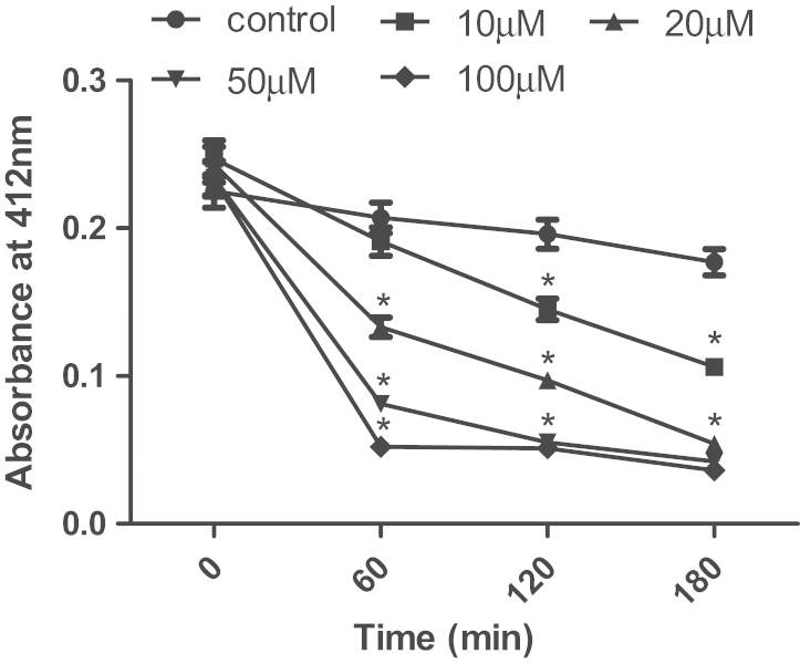 Effects of iron on the rate of dithiothreitol oxidation. The rate of oxidation was evaluated at the indicated times and concentrations of iron. Data are the means of five to seven independent experiments carried out in different days. Data are expressed as mean±SEM and post-hoc comparisons were done by Duncan's multiple range test. *Significant difference in relation to the control.