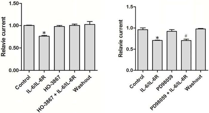The inhibitory effect of IL-6/IL-6R on TRPM7 currents is blocked by the STAT3 inhibitor HO-3867, but not by the inhibitor MAPK signaling pathway. (A) Relative currents normalized to TRPM7 currents recorded during perfusion with divalent-free extracellular solution. The specific STAT3 inhibitor HO-3867 did not inhibit TRPM7 inward currents at -100 mV, but blocked the effect of IL-6/sIL-6R (n = 3, * p