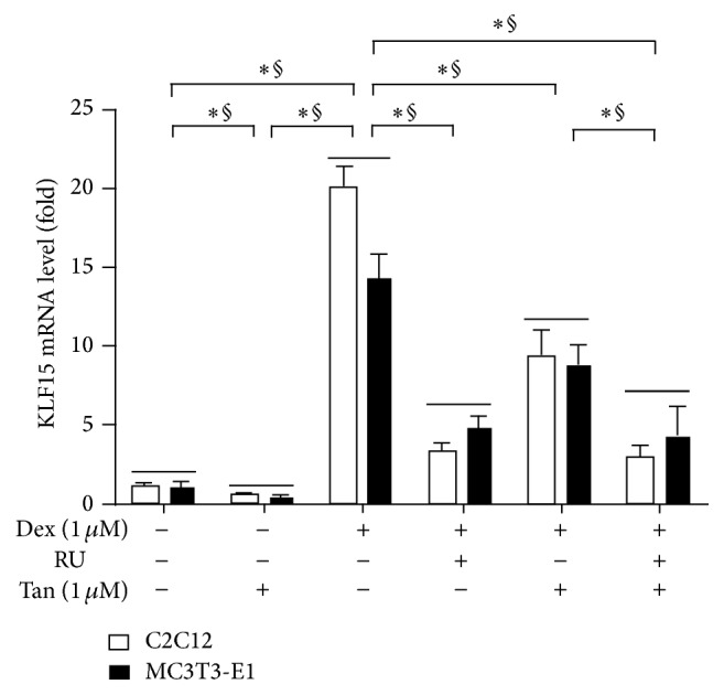 Tanshinol regulates expression of <t>KLF15</t> gene under condition of Dex involving glucocorticoid receptor. C2C12 cells and MC3T3-E1 cells were treated with Dex and/or RU486 (RU, a direct target of glucocorticoid receptor) in the presence or absence of Tan for 12 h; mRNA expression of KLF15 gene was measured by qRT-PCR. Values are means ± SD of at least three independent experiments. ∗ P