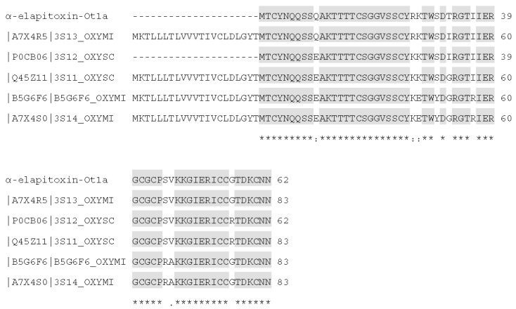 Sequence alignment (from BLAST search) of α-elapitoxin-Ot1a with short-chain postsynaptic neurotoxins from Oxyuranus spp. Shaded amino acids are similar to α-elapitoxin-Ot1a. Amino acids with (*) are fully conserved in all toxins, conserved amino acids with (.) are weakly similar properties group and amino acids with (:) are strongly similar properties group.
