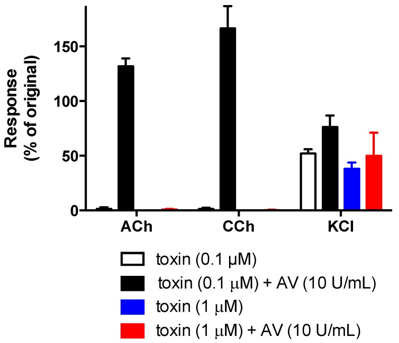 Effect of <t>α-elapitoxin-Ot1a</t> (0.1 µM or 1 µM) alone and in the presence of taipan antivenom (AV; 10 U/mL) on contractile responses of the chick biventer cervicis nerve-muscle preparation to acetylcholine (ACh; 1 mM), carbachol (CCh; 20 µM) and potassium chloride (KCl; 40 mM).