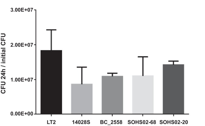 S . Typhimurium with nsSNPs in tetrathionate respiration genes show no growth impairment when cultivated anaerobically. Strain LT2 (wild type) and four S . Typhimurium strains with amino acid substitutions in TtrC or TtrS were grown anaerobically in BBL tetrathionate broth: strain 14028S (TtrC R187H) and BC_2558, SOHS02-68 and SOHS02-20 (TtrC R187H, TtrS V421G, D204A). The number of CFU were determined at 0 and 24 h. The values are the means plus standard deviations (error bars) of the ratio between the number of CFU at 24 h and the initial CFU count for each strain.