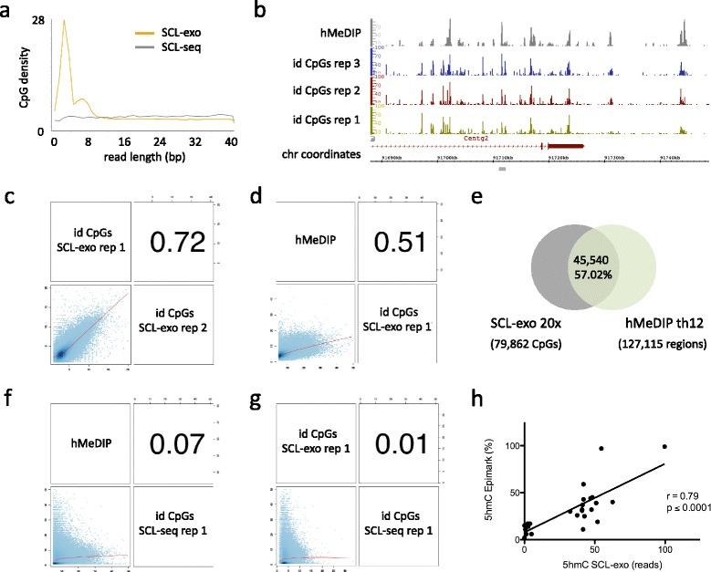 Validation of the SCL-exo strategy for single-CpG resolution mapping of 5hmC in genomic DNA from P19 cell-derived NPLCs. a Average CpG density along read length from SCL-seq (375,104 reads from chr7) and from SCL-exo (899,652 reads from chr7). b IGB visualization of hMeDIP and SCL-exo signals from three technical replicates in the 3' region of the Centg2 gene. c Genome-wide correlation coefficient value (Pearson's coefficient, r) for.wig files corresponding to two technical replicates of SCL-exo identified (id) CpGs. d Genome-wide correlation coefficient value for one replicate of hMeDIP and one replicate of SCL-exo. e Venn diagram indicating the percentage of SCL-exo id CpGs (called from the consensus.wig file with a coverage threshold of 20×) included in hMeDIP-seq peaks (called with a threshold ( th ) of 12×). f Genome-wide correlation coefficient value for one replicate of hMeDIP and one replicate of SCL-seq. g Genome-wide correlation coefficient value for one replicate of SCL-exo and one replicate of SCL-seq. h Correlation between SCL-exo signal at id CpGs (number of reads) and their percentage of hydroxymethylation determined with the EpiMark kit for 27 selected CCGG sites (r: Pearson's correlation coefficient)
