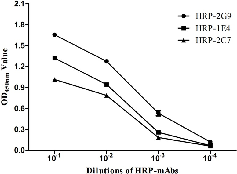 Analysis of the affinities of three <t>HRP</t> labeled <t>mAbs</t> (HRP-1E4, HRP-2C7, and HRP-2G9) for sORF2-C using direct ELISA. The three HRP-mAbs (1 mg/ml) in a dilution range of 10 −1 to 10 −4 were tested for reaction with the sORF2-C protein in the direct ELISA.
