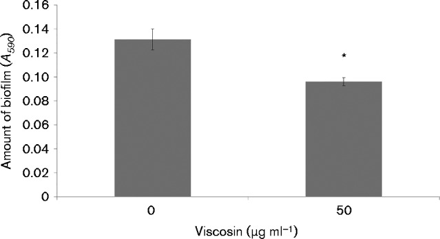 Mature biofilms of P. fluorescens SBW25Δ viscA complemented with purified viscosin at concentrations of 0 and 50 μg ml − 1 . Biofilms were quantified after 9.5 h of incubation with and without viscosin by the crystal violet assay. Data represent mean ± sd for a representative dataset including eight replicates. *Significant difference ( P