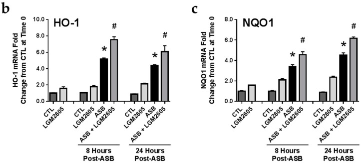 LGM2605 Boosts Nrf2 Activation and the Expression of Antioxidant Enzymes in Elicited Murine Peritoneal Macrophages. ( a ) Levels of active, nuclear Nrf2 were determined at 0, 1, 2, 4, 6, 8, and 12-h post asbestos exposure; Macrophage mRNA expression of ( b ) HO-1 and ( c ) NQO1 was determined at 0, 8, and 24-h post asbestos exposure using qPCR. Levels of target gene mRNA were normalized to β-actin RNA and values are expressed as fold change from CTL. Data are presented as mean ± SEM. * indicates a statistically significant difference ( p
